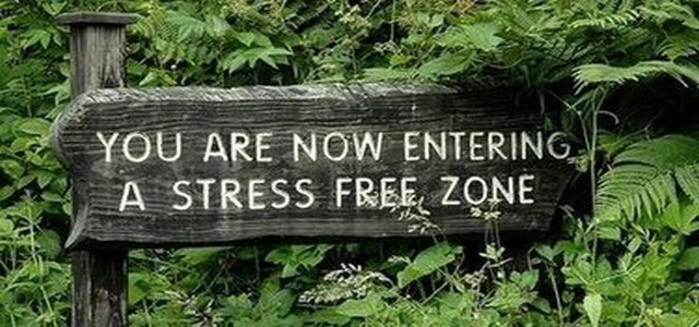 stress free zone_slideshow.jpg